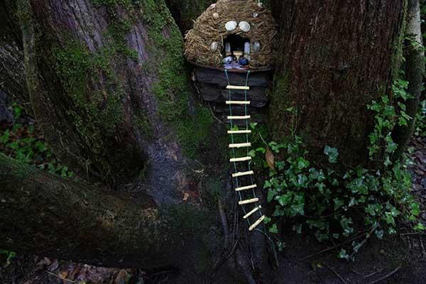 Derrynane Fairy trail