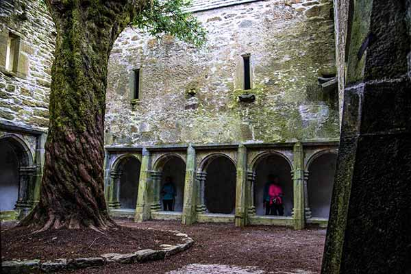 Muckross Abbey Kerry